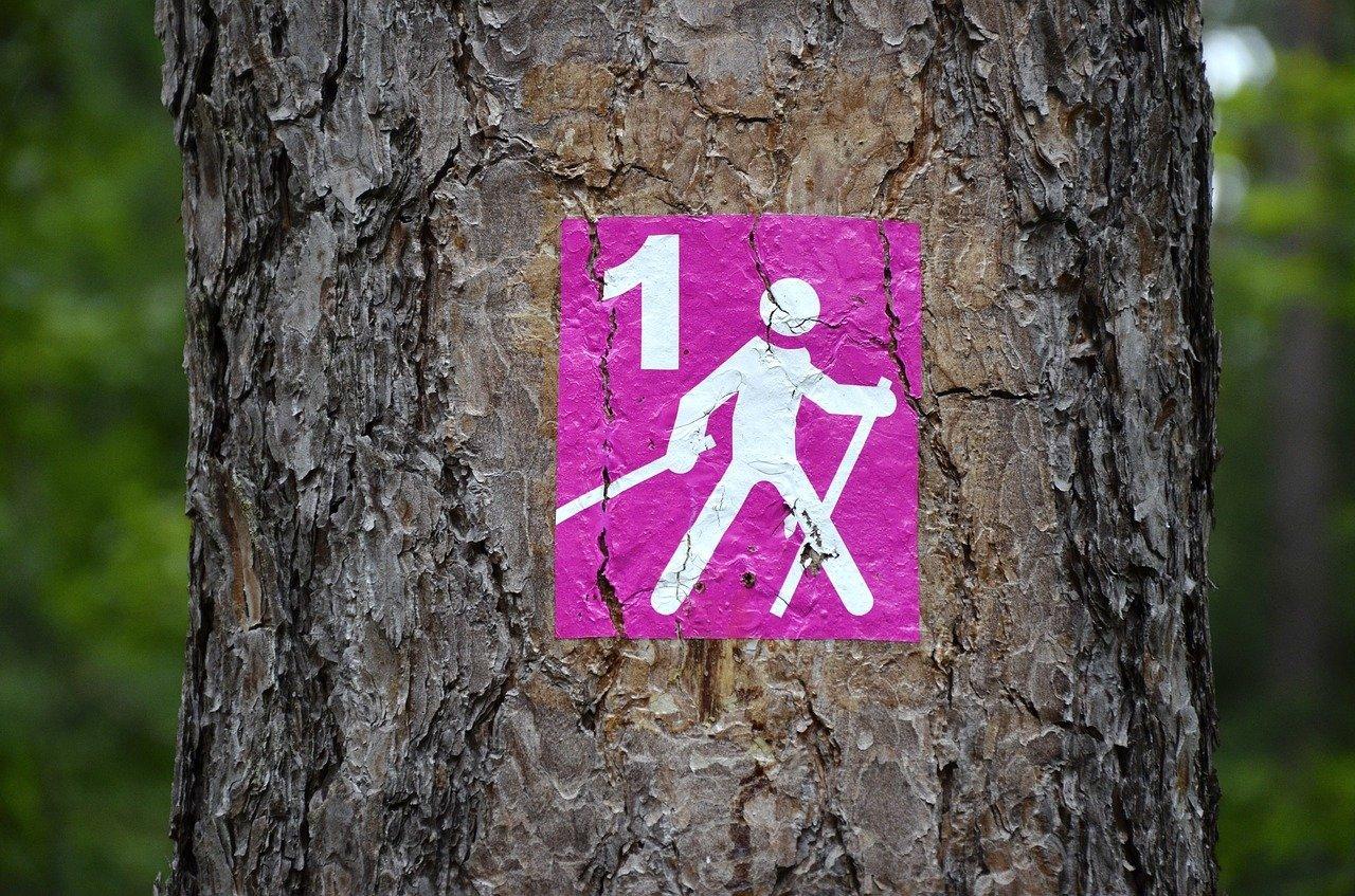 Czym jest nordic walking?